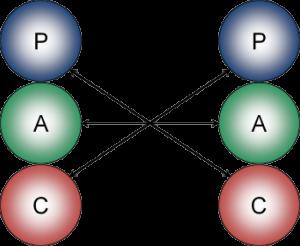 PAC Model